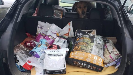 Animal-Food-Bank-looking-to-feed-Kelowna-s-pets-in-need